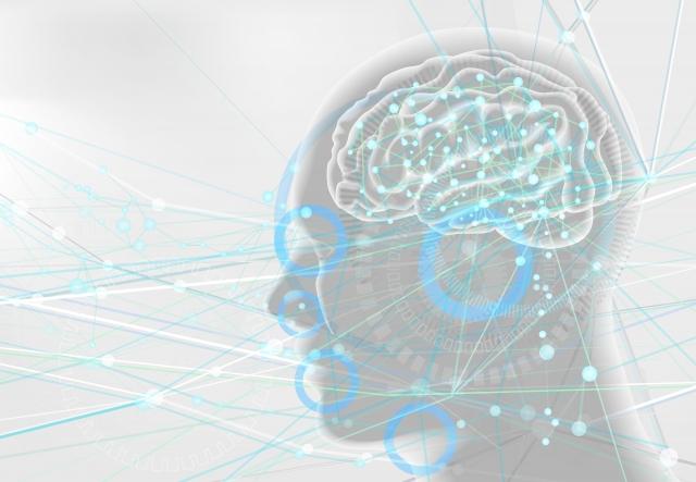流動性知能